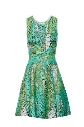 Printed Green Jaquard Dress-0