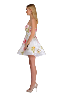 Sweet Rose Dress-1