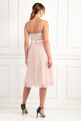 Blossom Pink Ballet Dress-2