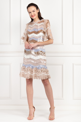 * Sequin Embellished Zig Zag Dress-1