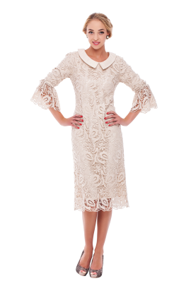 Ivory Lace Sleeved Dress-3