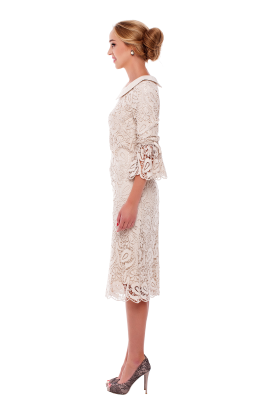 Ivory Lace Sleeved Dress-1