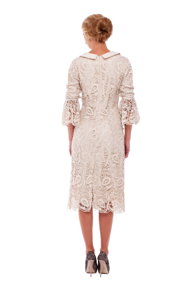 Ivory Lace Sleeved Dress-2