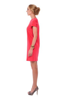 Coral Pink Embroidered Dress-1