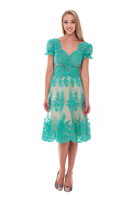 Vine Green Lace Dress-0