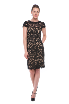 Black Embroidery on Tulle Dress-0