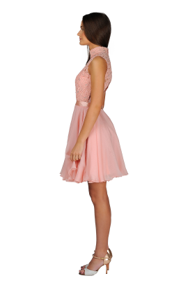 Blush Lady Dress-2