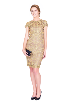 Golden Embroidery Dress -0