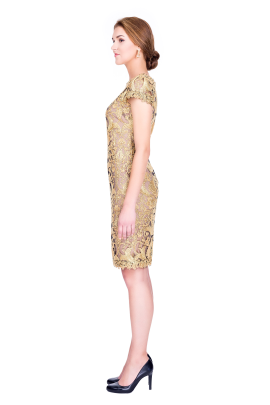 Golden Embroidery Dress-1
