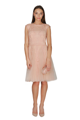 Pink Shadow Tulle Dress -0