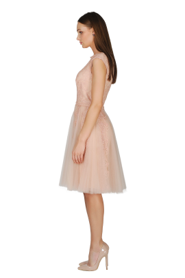 Pink Shadow Tulle Dress -1
