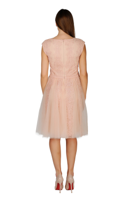 Pink Shadow Tulle Dress-2